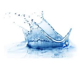 Oceanic Blue Shampoo